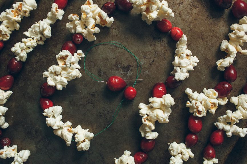 cranberries and popcorn on a string
