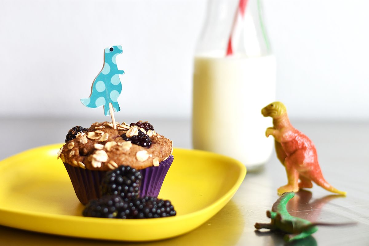 dinosaur and muffin alt hero