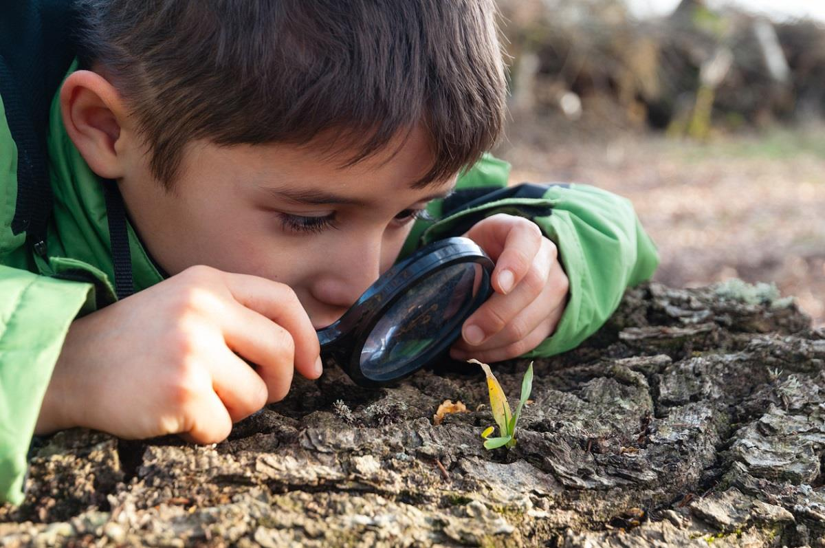 Observe and Learn! How a Magnifying Glass Builds Kids' Science Skills