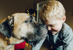 Good Dog, Good Kid: Teaching Your Child Safety and Good Manners with Pets