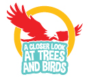 A CLOSER LOOK AT TREES AND BIRDS