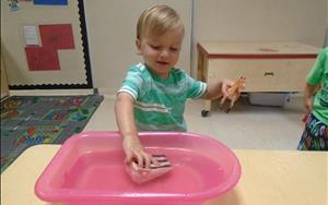 What floats and what sinks? Exploring in the twos classroom