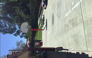 School Age Basketball Court