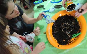 Science Night: Exploring Nature