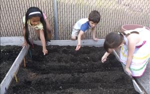 Planting our seeds for our own garden!