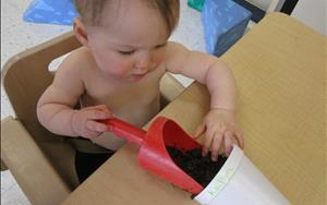 Gardening in our Infant classroom
