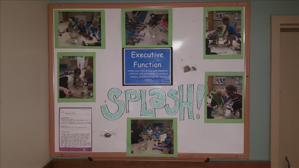 Toddler display for Executive Function Activity