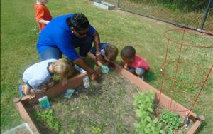 Planting and exploring in the garden with Ms. Cassandra.