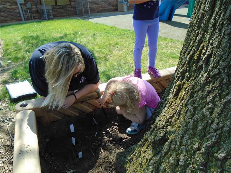 Springdale Road Kindercare Daycare Preschool Early