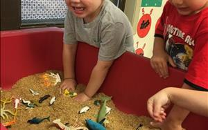 "Our Preschool class loved digging in the rice to find the ocean animals during the ""Water"" theme."