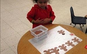 Roma is strengthening her math skills by counting gingerbread men (preschool)