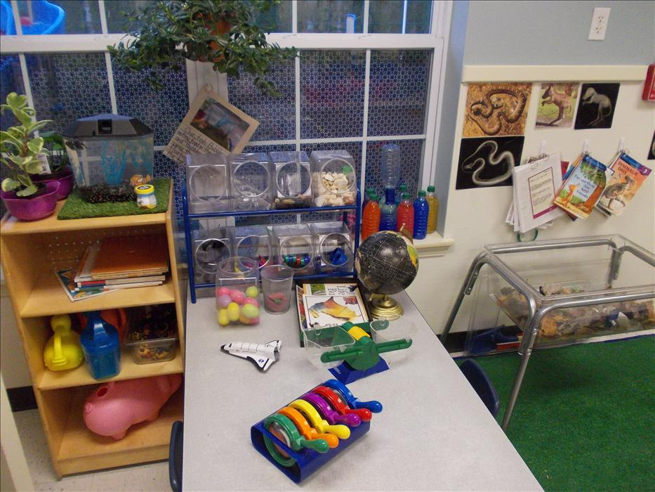 Preschool Science Area