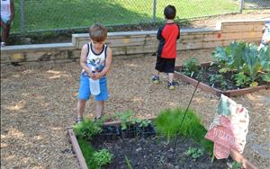 Our Preschoolers spraying water to the garden!