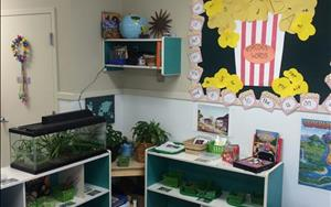 Kindergarten Science Area