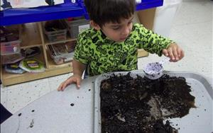 One of our Preschoolers digging in the dirt.