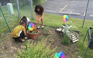 Makayla, Jazmin and Brooklyn are helping in the garden.