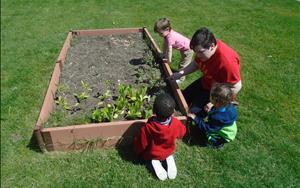 Toddlers roaming through the garden learning about plants and growing food