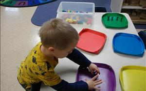Our preschool children love to learn new things. This child is sorting the bears based on color.