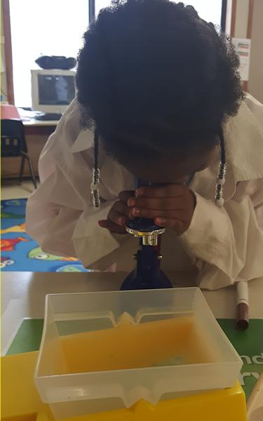 Prekindergarten scientist.