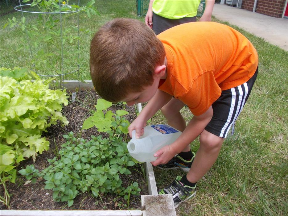 Watering our garden