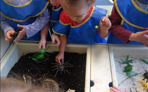 Our Discovery Preschool children exploring soil in the sensory table.