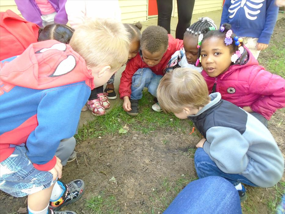 We have a GREAT outdoor play space for our students to explore!  We had Turtles lay eggs on our Playground and the students were able to watch!