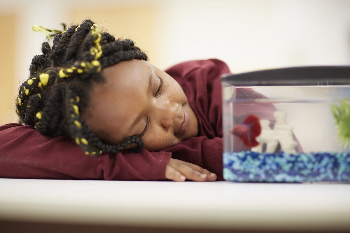 Take a Breath: 5 Deep Breathing Exercises that Help Kids Get